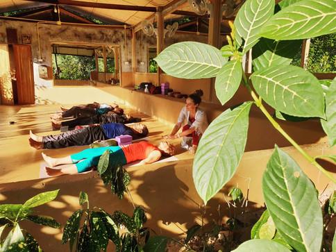 Jungle Retreat Thailand