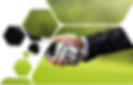 Golf fundo 5.png