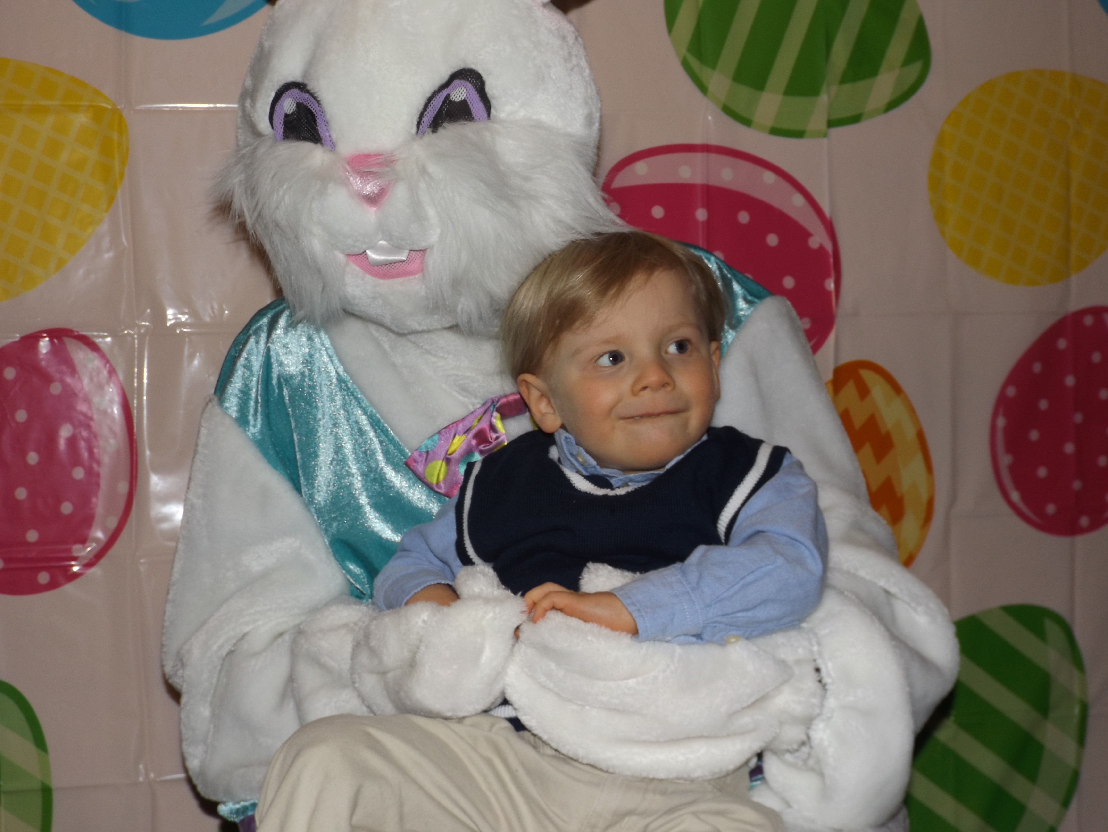 Easter Bunny 2018