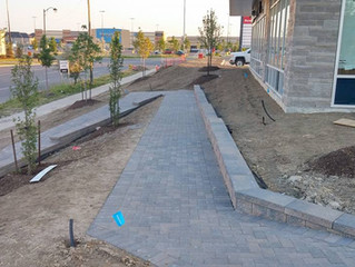 Recent Project: History Hill Plaza