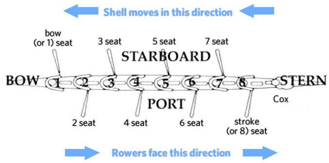 rowing termiology.jpeg