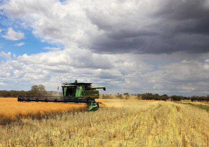 IMG_6360 crop.jpg
