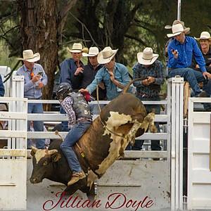 2020 Bendemeer Rodeo