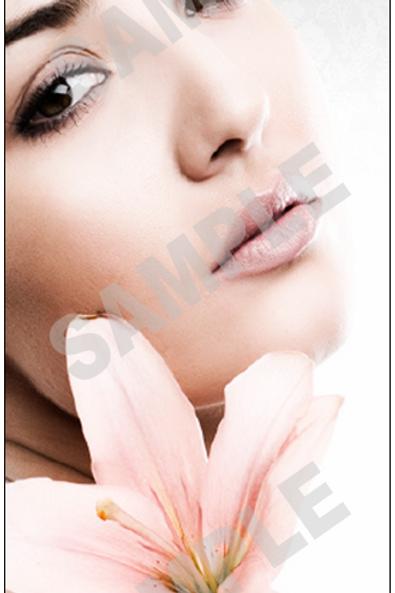 Balanced Beauty Brochure - 50 Pack