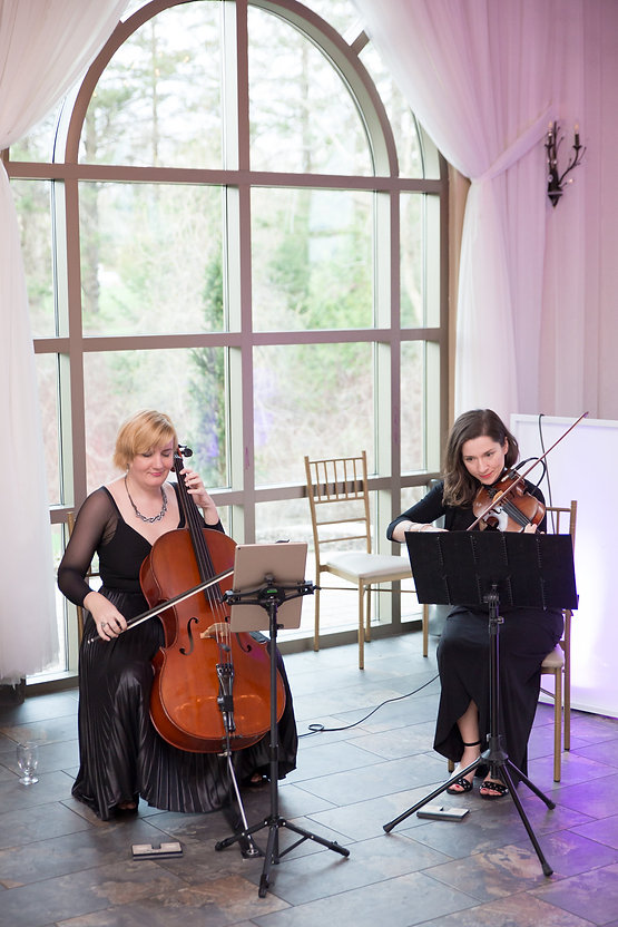 Beaux Strings Live. Photo by Dan Clements