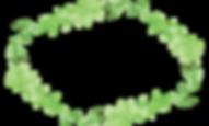 Plant Wreath 4