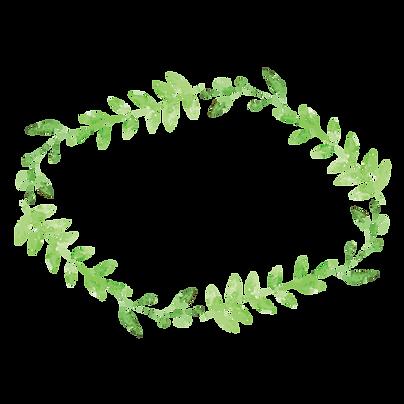 Plante Couronne 4