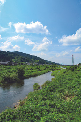 kamogawa_d.jpg