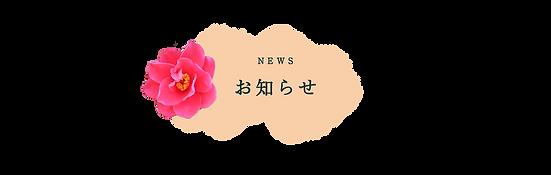 トップh1お知らせ.png