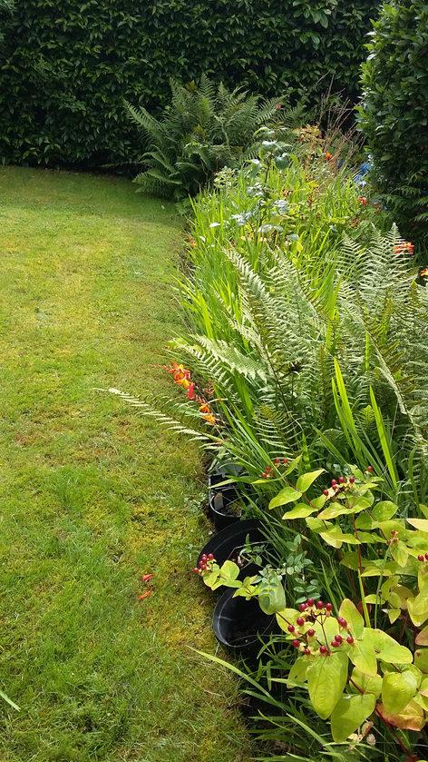 well established floral border