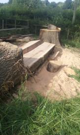 Chainsaw milling oak
