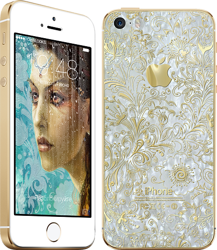 iPhone 5S 64Gb OWNLOOKS Assol