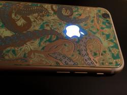 iPhone 6S modding Ownlooks