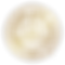 CLS Gold Shine sm.png