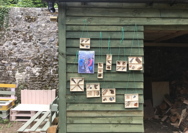 Forest School Picture Frames.jpg