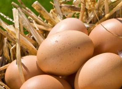 Verse eitjes per stuk