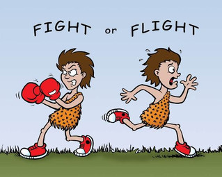 FIGHT OR FLIGHT!