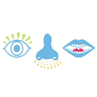 What does your eyes, ears, nose & lips have in common?