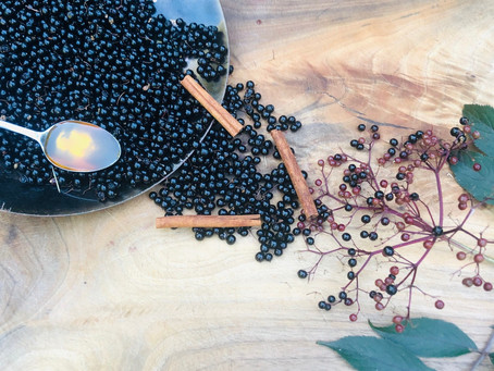 It's Elderberry Syrup Time!