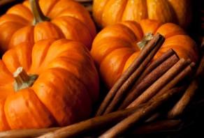 Pumpkin Power: Seeing Beyond the Pie