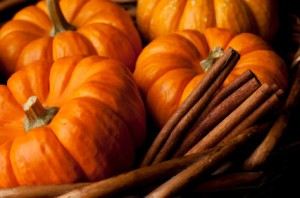 Pumpkin Power: Seeing Beyond the Pie