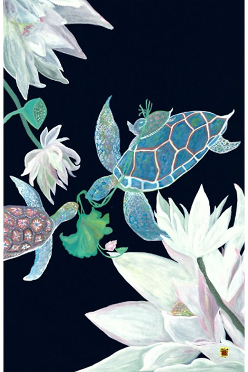 WaterLily Tortoise Family 3