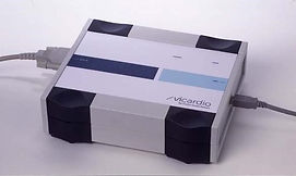 vicardio2.jpg