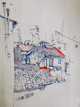 Fiorentine roofs