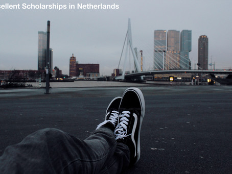 Amazing Scholarships in the Netherlands for International Students