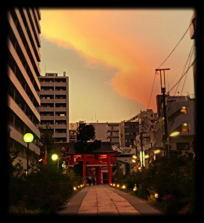 Tokyo Sunset Japan Past Shrine Red Gate