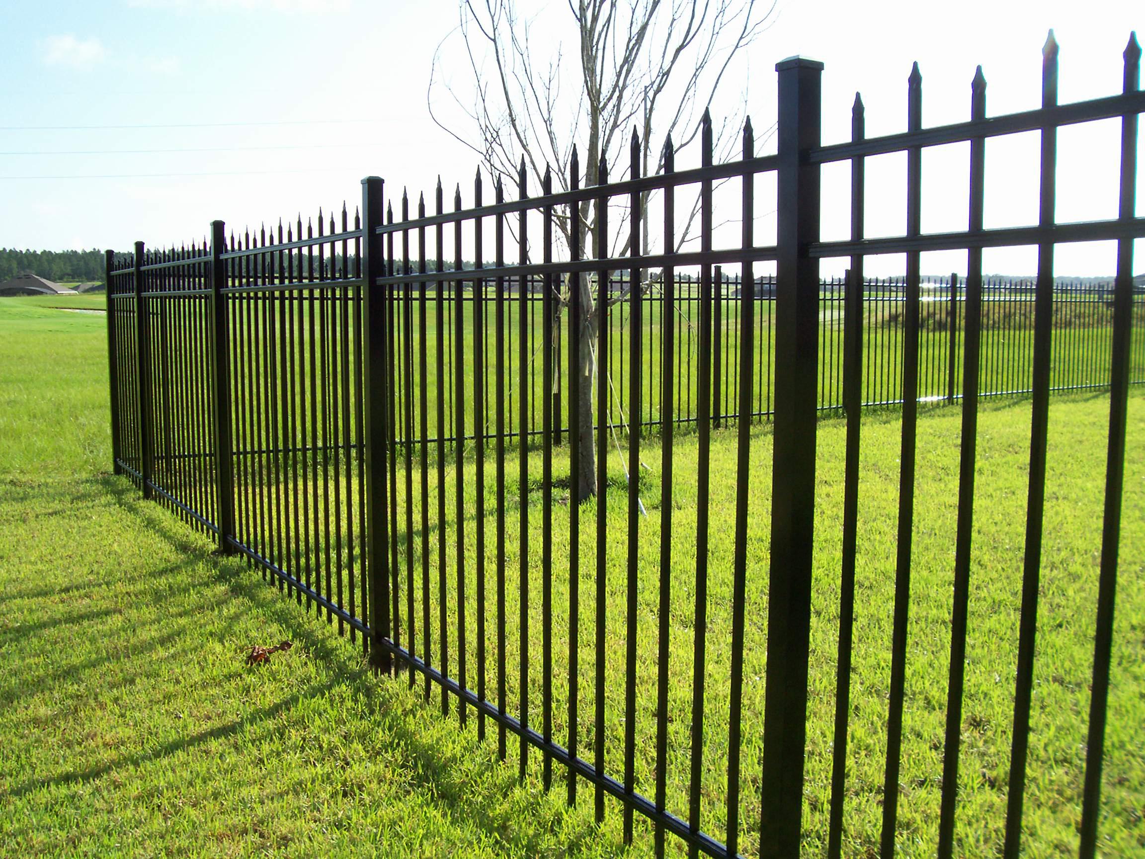 metal fence morales.jpg