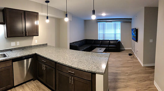 Marshall Suites Living Room/Kitchen