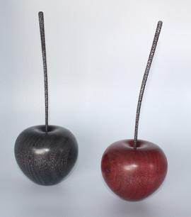 Pomme grande tige  - La Boissellière - Lydie Billon -