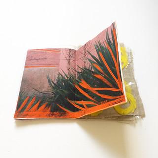 Libro d'artista, Sophie Mühlmann