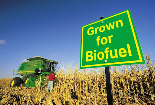 """Biofuels: the harsh reality of """"clean energy"""""""
