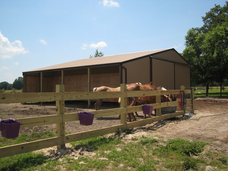 custom horse farm building