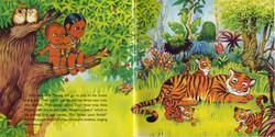 RangBibi - Jungle