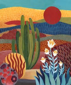 My Desert Home 1
