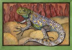 desert Lizard.jpeg