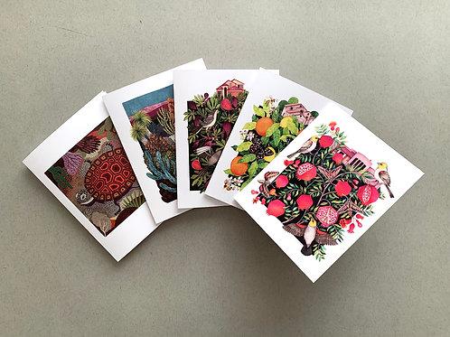 Assorted - 5 Card + Envelope set
