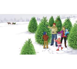 Tree shopping