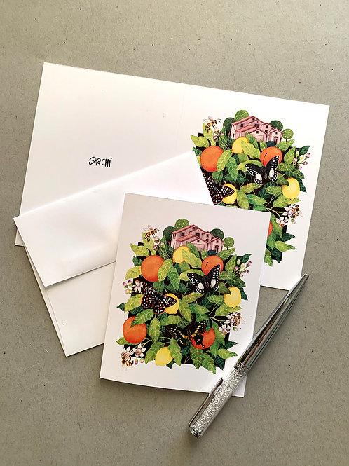 Citrus - 5 Card + Envelope set