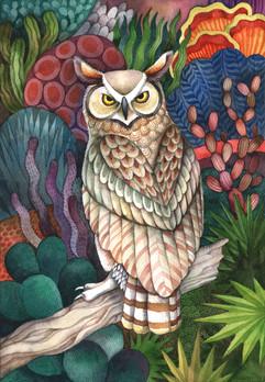 desert owl.jpg