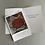 Thumbnail: Desert Tortoise - Birthday Card + Envelope set