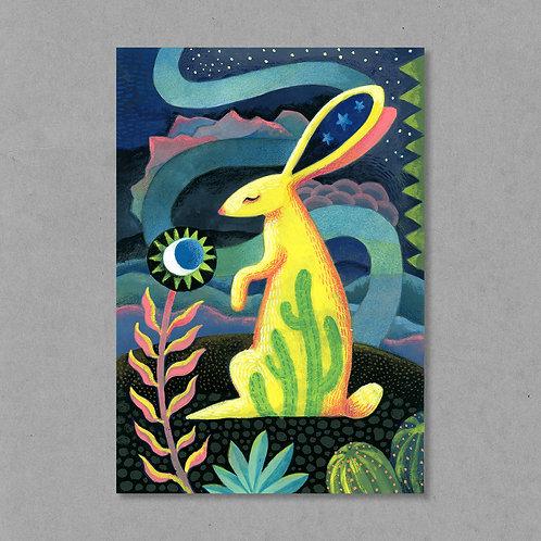 Desert Rabbit Dreaming