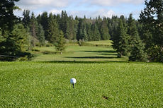 Golf Edmonton Area