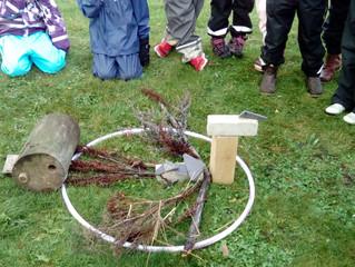 Boka besök på Naturskolan