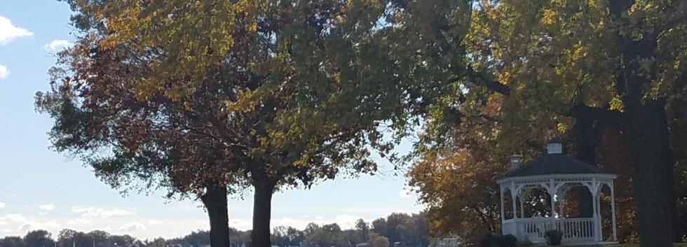Autumn at EYC.jpg