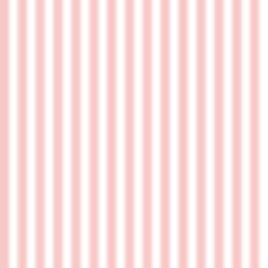 darkroom_days_backdrop_pink_stripes.jpg