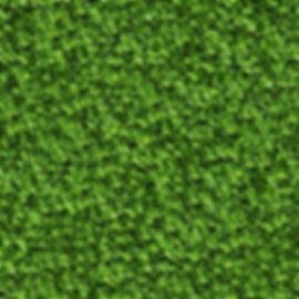 darkroom_days_backdrop_greenleaves.jpg
